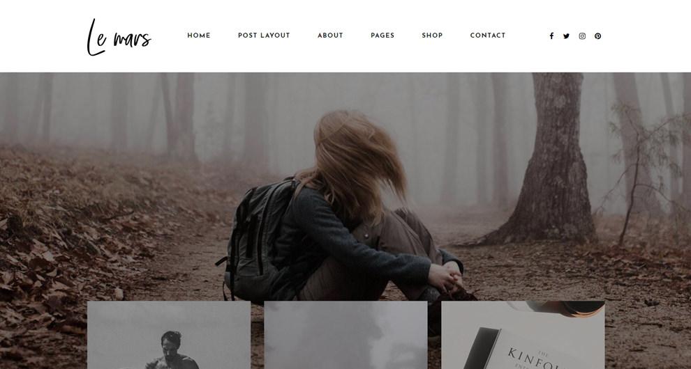 ücretli en iyi wordpress blog teması 1