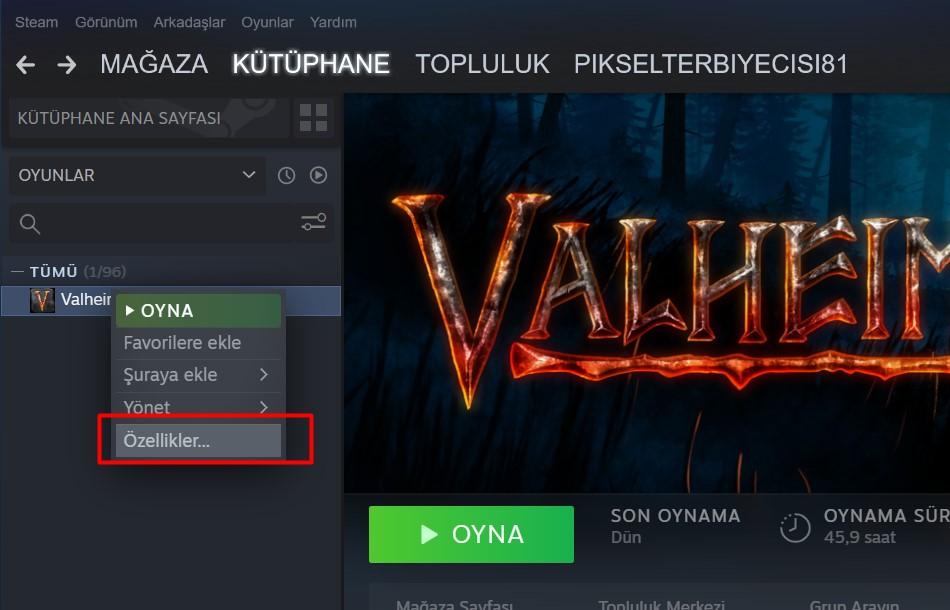 valheim f5 cheat console activate 1